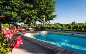 Piscine privative vue vignoble