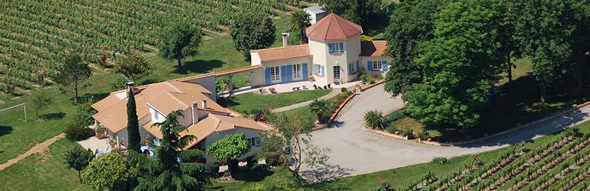 Le gîte les vignes de Michelet d'une capacité de 10 personne vous accueille au coeur du vignoble de Buzet sur son domaine cultivé en agriculture biologique.